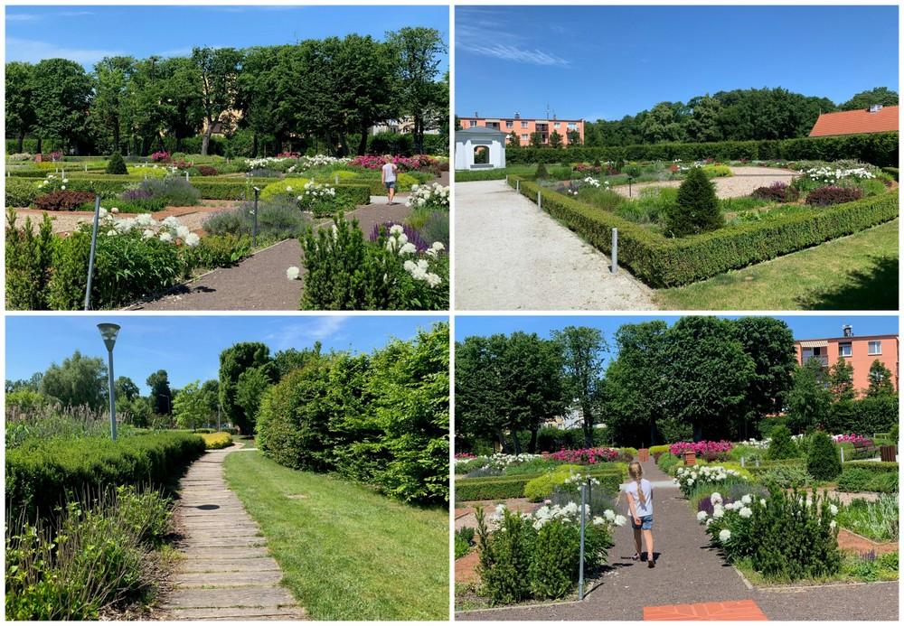 Ogród w Parku Orientacji