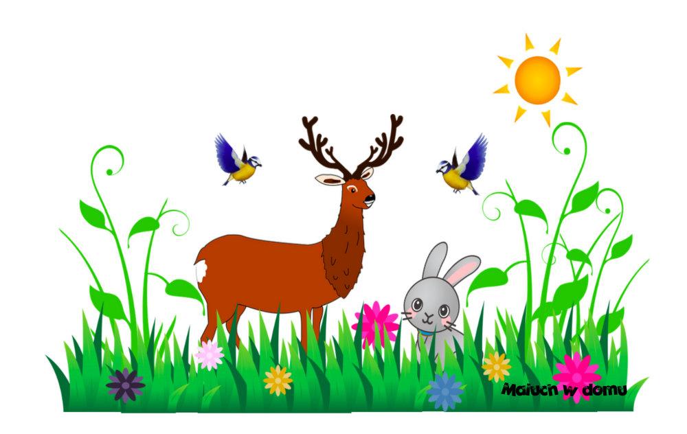 Znajdź różnice - wiosna