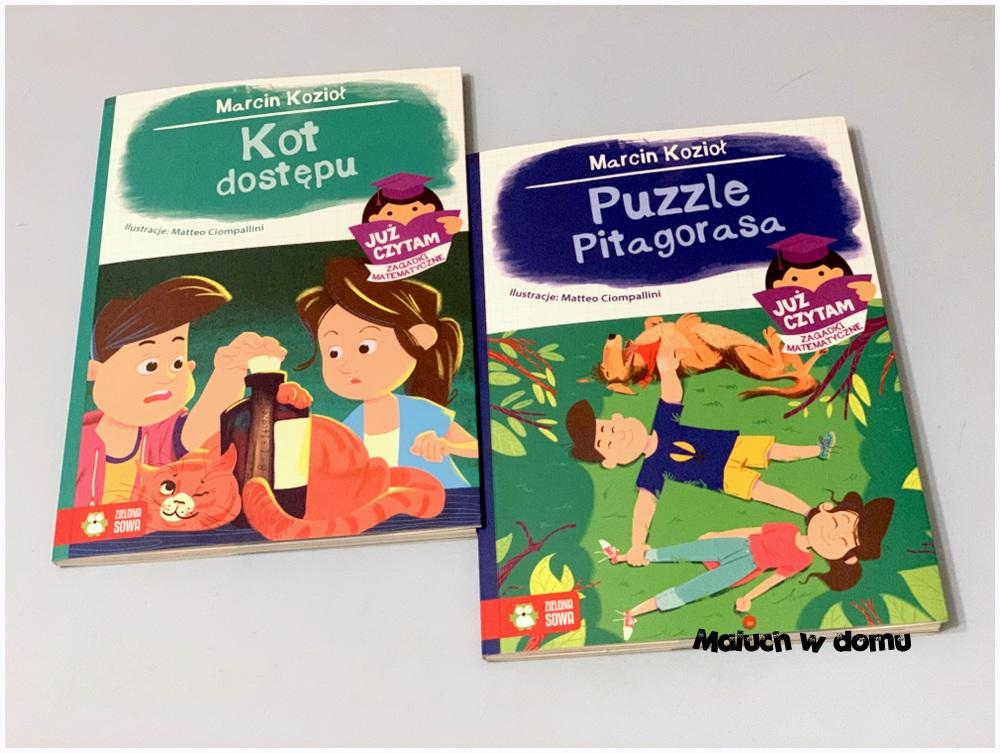 Już czytam, Puzzle Pitagorasa, Kot dostępu