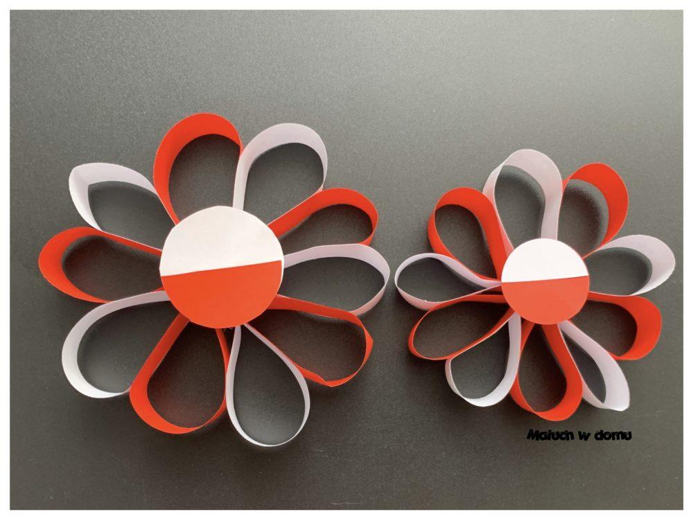 Kwiaty w kolorach Polski