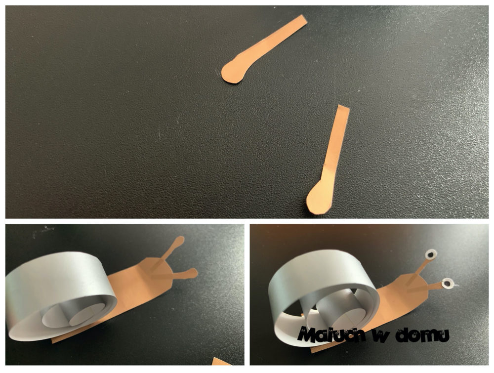Ślimak z papieru