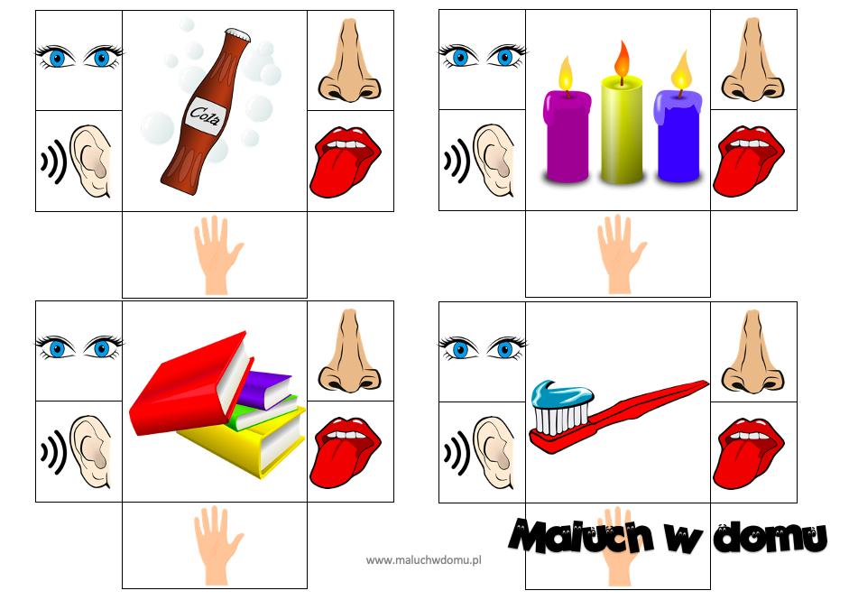 Zabawy ze zmysłami dla dzieci